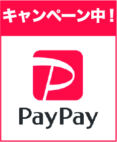 paypay banner